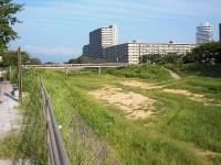 歩いて渡れる砂川(草津川)