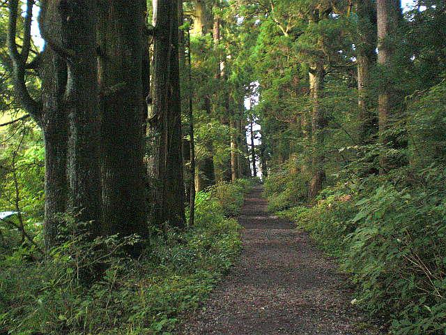 旧国道一号線の歩道として並走する旧東海道