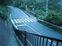 旧東海道専用横断歩道(バス停)